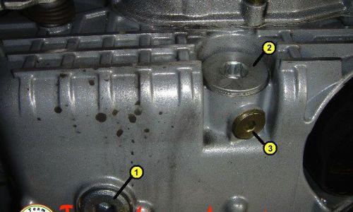Cambio olio & filtro - motori Coppa Alta