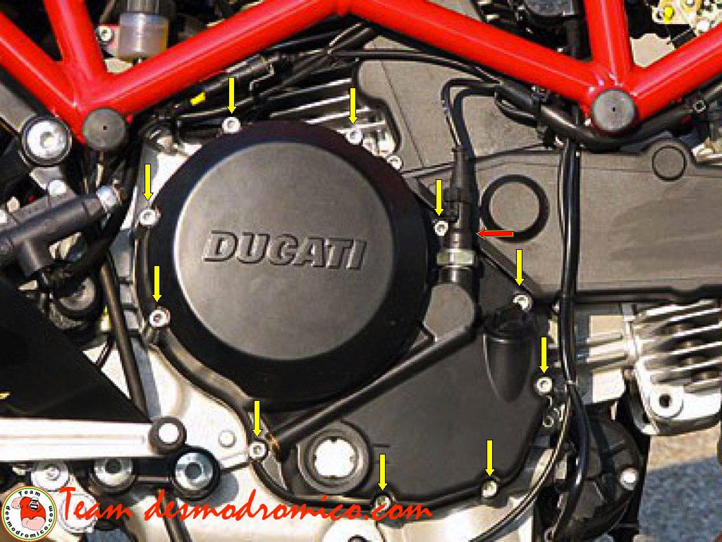 Team desmodromico - Sostituzione dischi frizione a bagno d\'olio